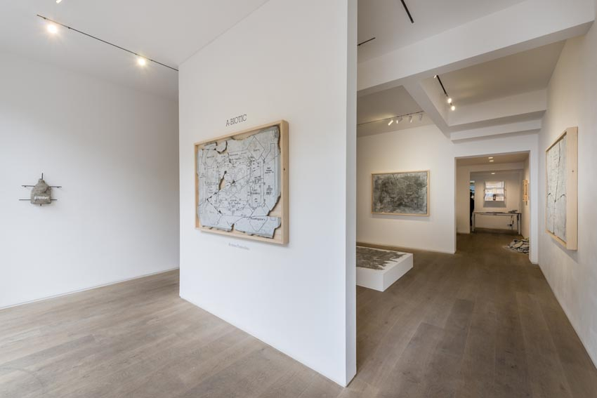 A-Biotic - August 2014, Kristin Hjellegjerde Gallery